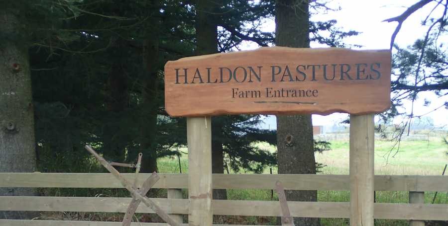 Haldon Pastures Trout Barrier